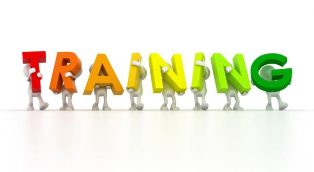 Franchisee Training:  Success Accelerated by Supporting