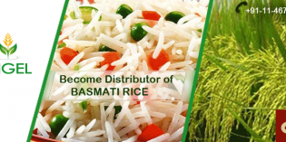 Join the group of biggest Rice Manufacturer