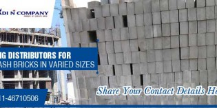 Build better build greener with ADI N Company fly ash bricks