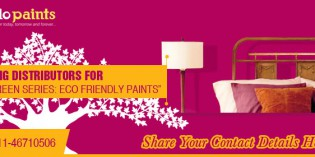 Go green and paint your walls with Apollo Paints Pvt. Ltd.'s Eco-friendly range of paints