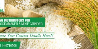 Served in a bowl or served on a plate , our rice is best in quality and taste – Shankar Rice And General Mills