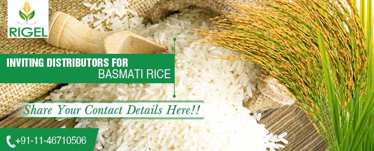 Shankar-Rice2(1)